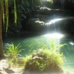 Piscina naturale nel parco dell'Isalo