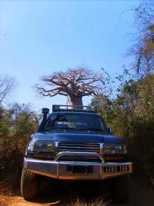 Madagascar viaggi tour 4