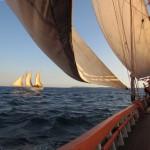 Madagascar tour barca 14