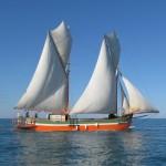 Madagascar tour barca 18