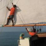 Madagascar tour barca 8